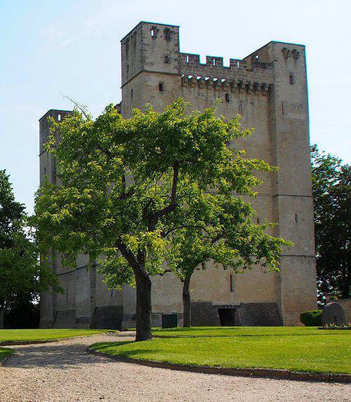 Donjon de Chambois