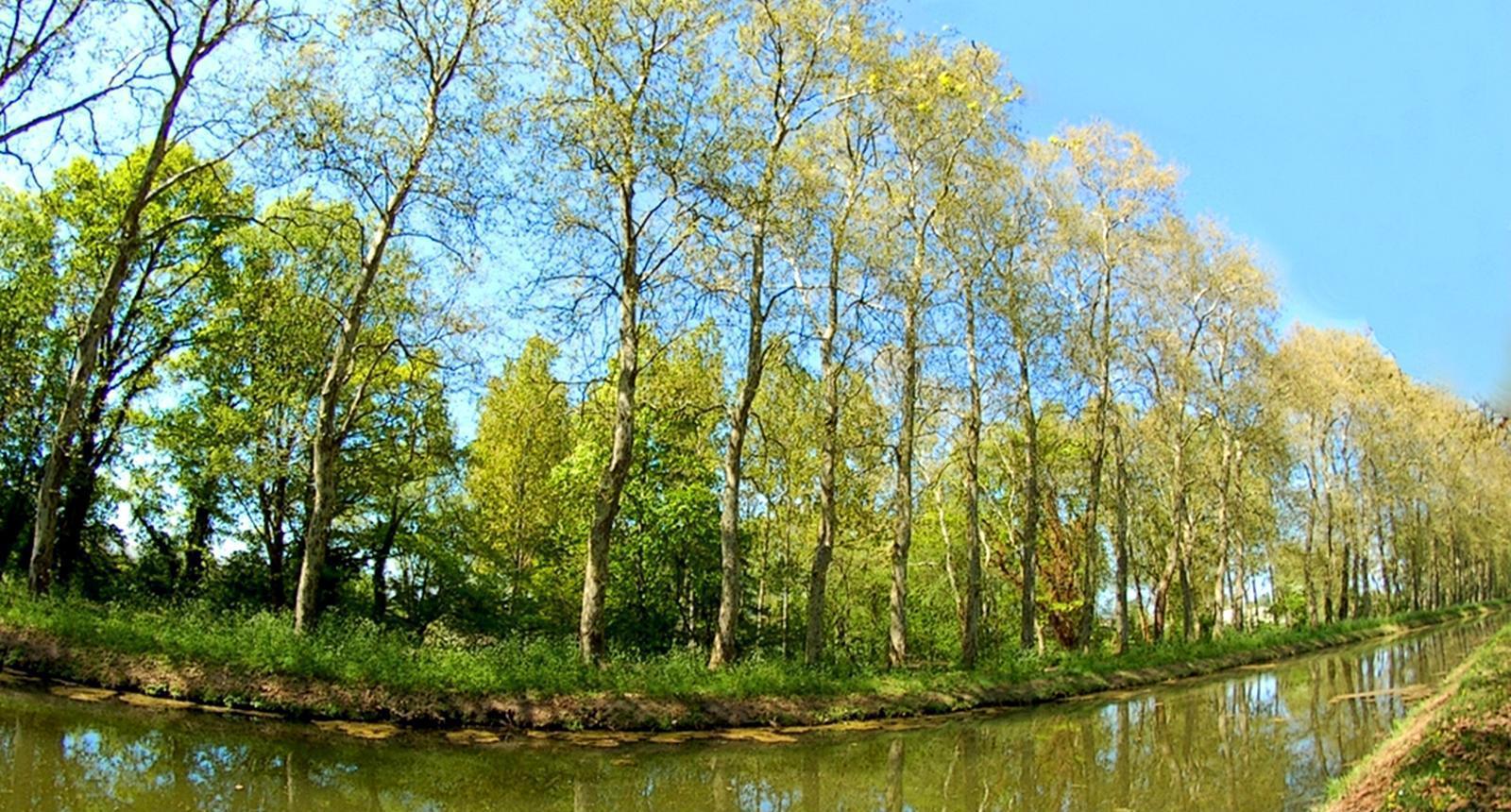 Le Canal du Berry, Sancoins