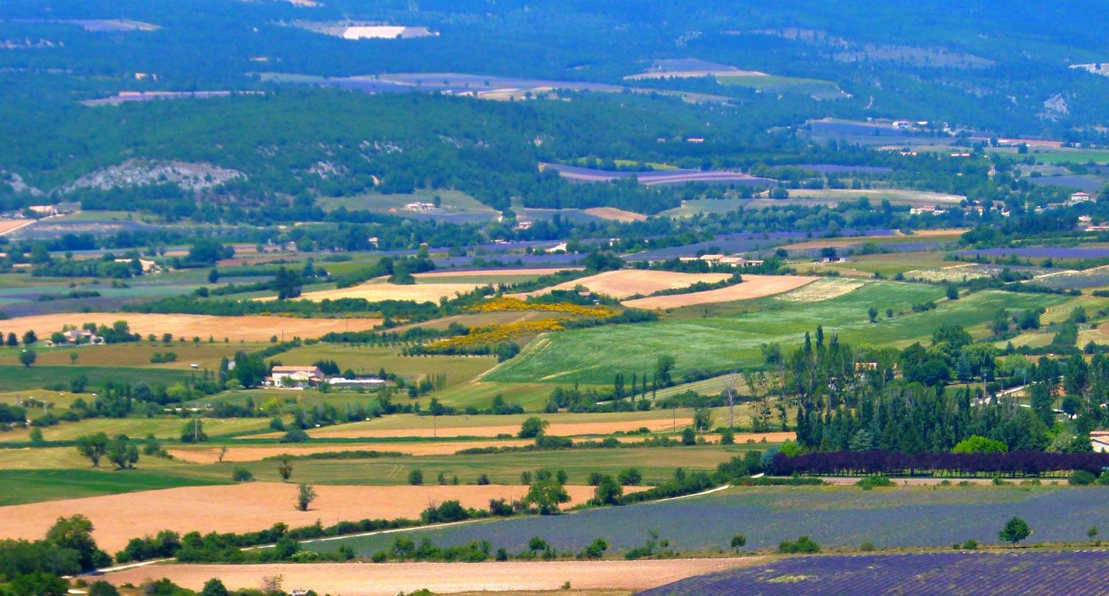 vaucluse paysages