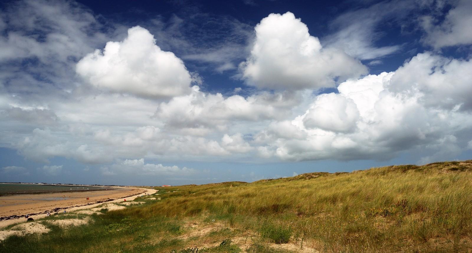 Dunes côtières à Saint-Jean-de-Monts
