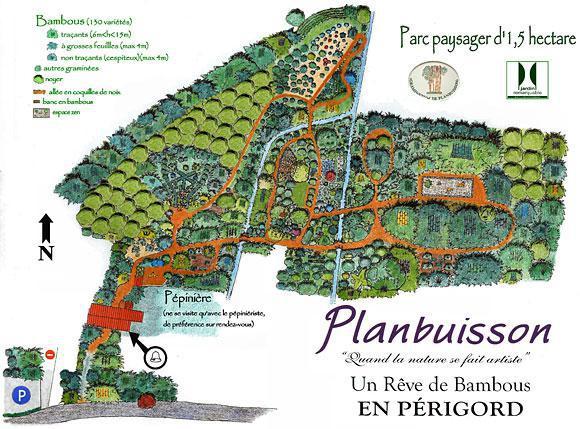 Image : Les Bambous de Planbuisson