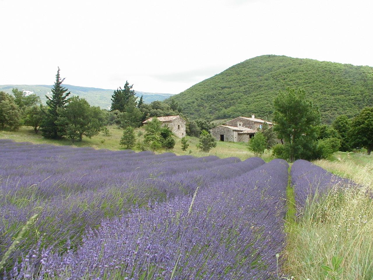 Image : Roche-Saint-Secret-Béconne