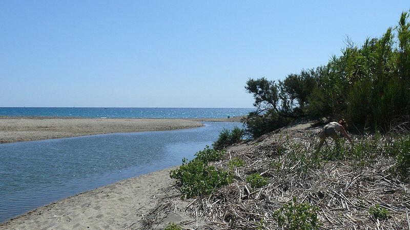 Réserve Naturelle littorale du Mas larrieu