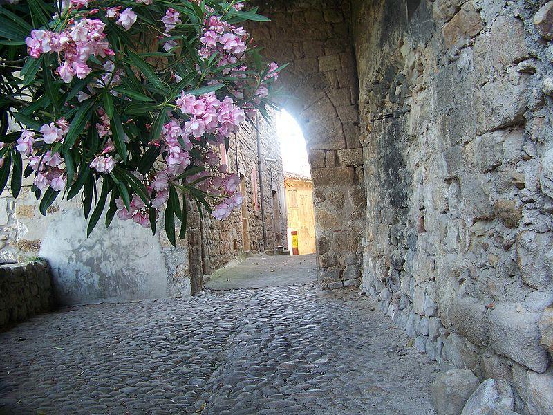 Joyeuse, rampe de la porte de Jalès
