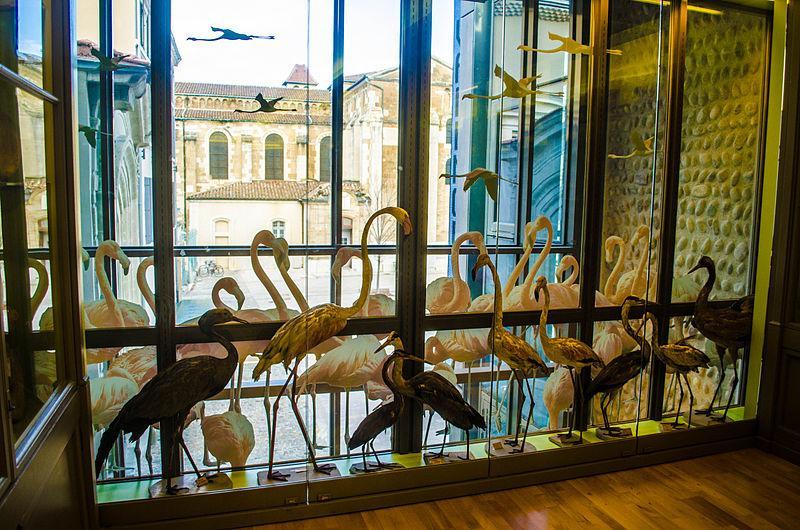 Image : Musée de Valence, Art et Archéologie