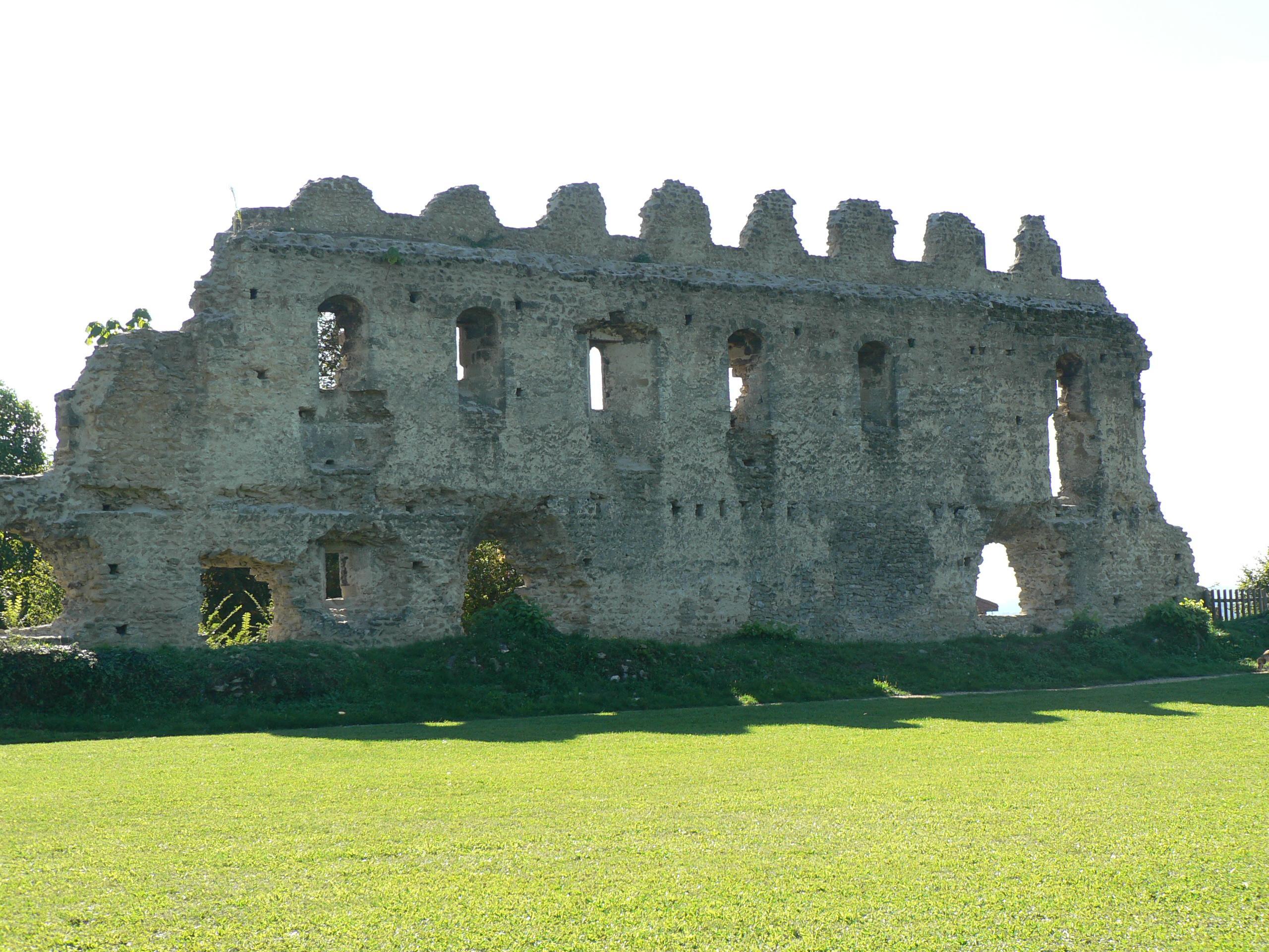 Vestiges du Château des Dauphins