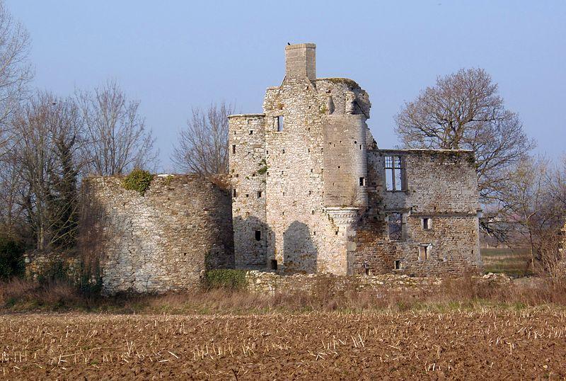 Ruine du château de Montfort.