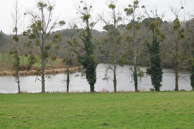 étang de Pen Mur, à Muzillac