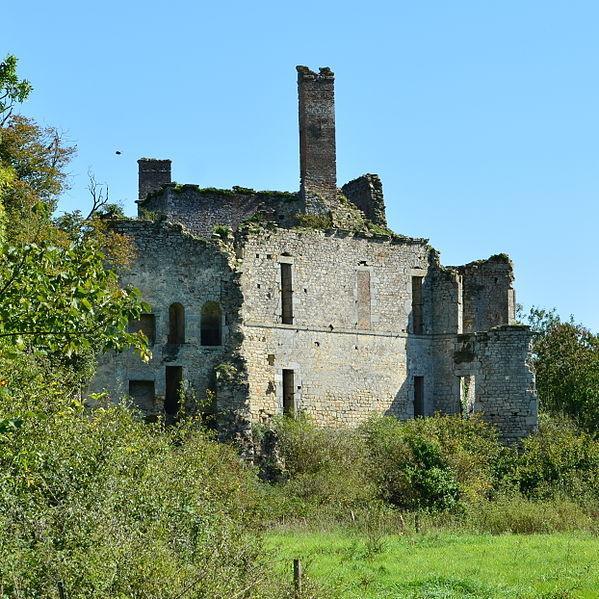 Chateau de Palluau