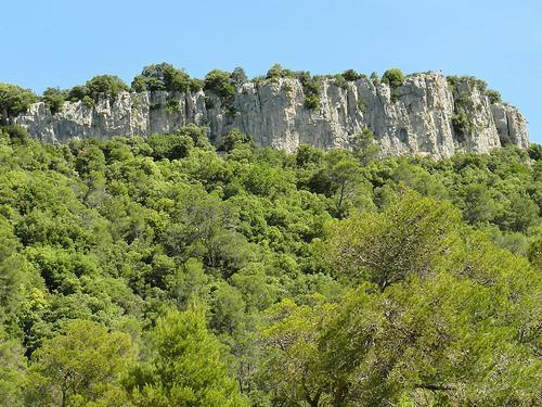 Image : Site du Rocher du Causse