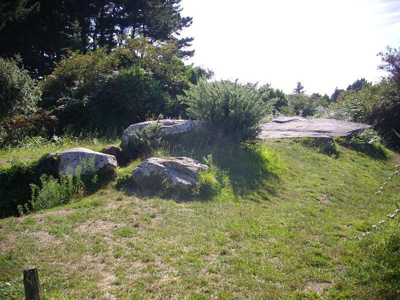 Arzon - dolmen du Graniol