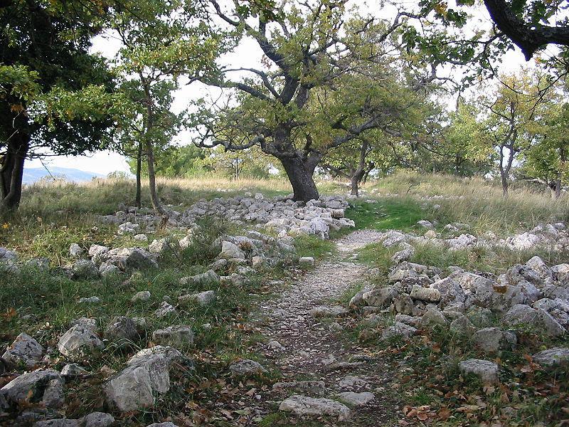 Site de la Quille, au Puy-Sainte-Réparade