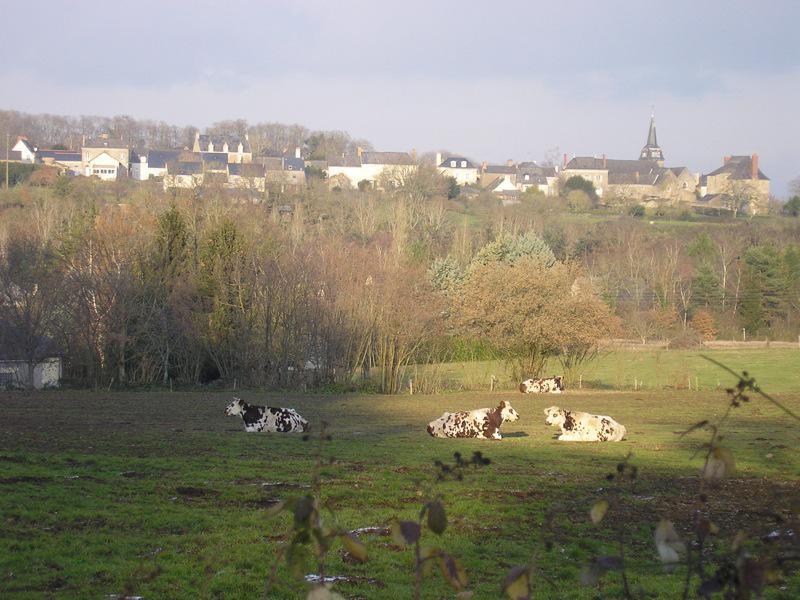 La Jaille Yvon, vue de la Vallée