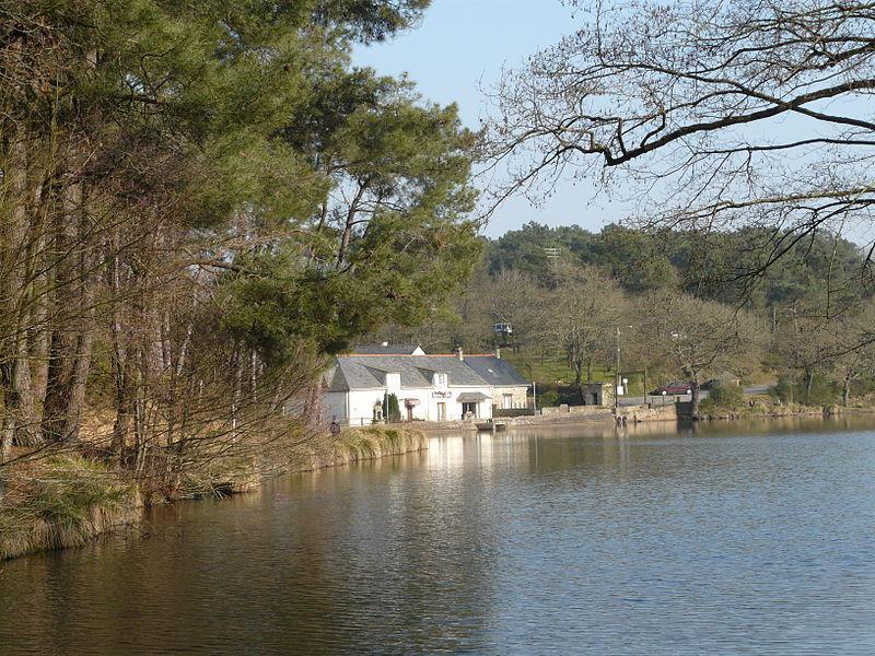 l'étang de la Roche