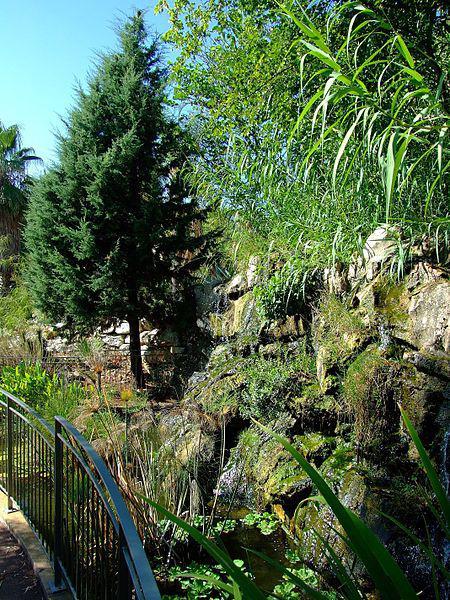Parcs jardins botaniques arboretums alpes maritimes for Jardin nice