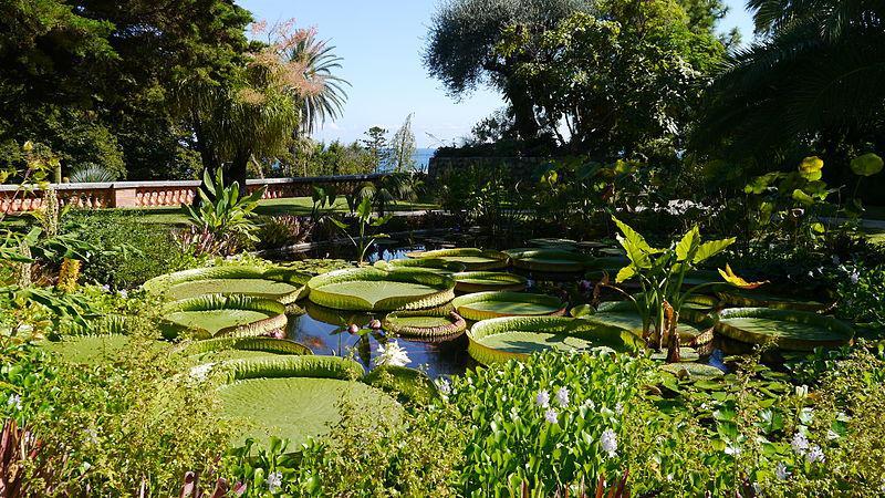 Jardin botanique du Val Rahmeh