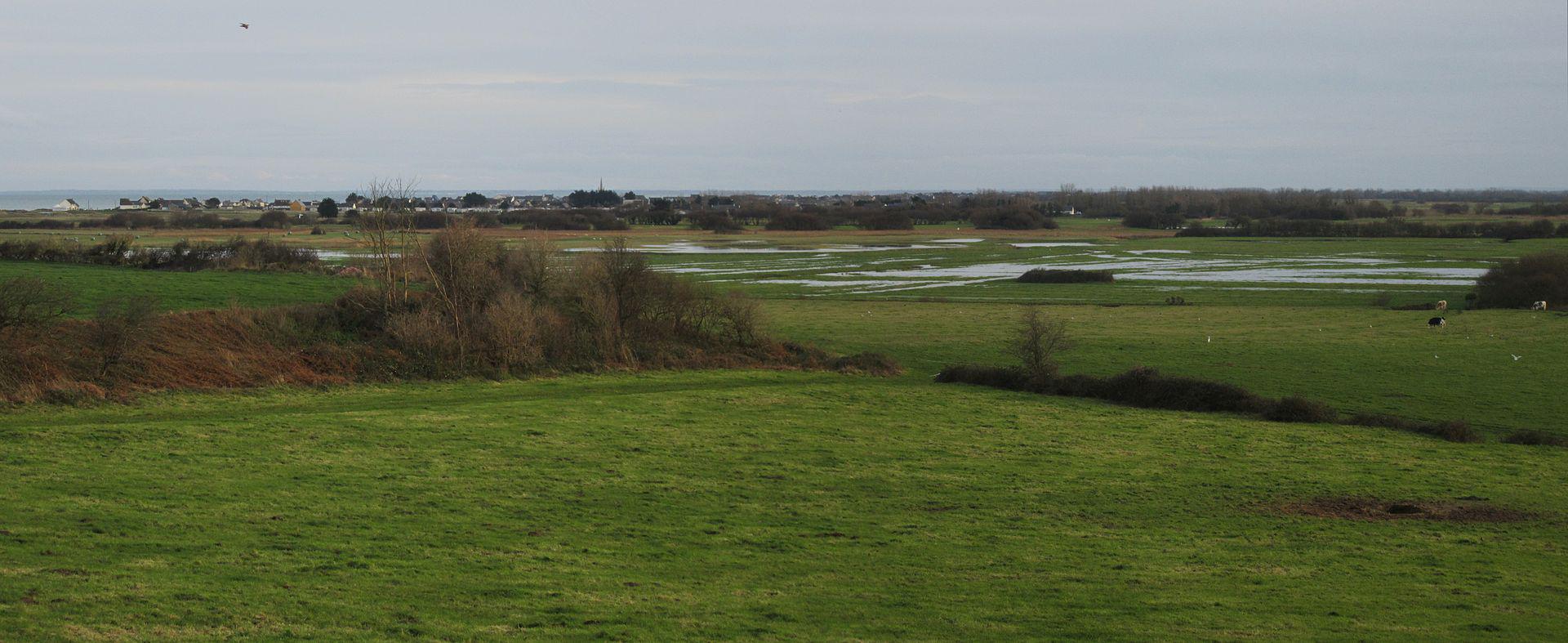 Quinéville - vue sur la côte