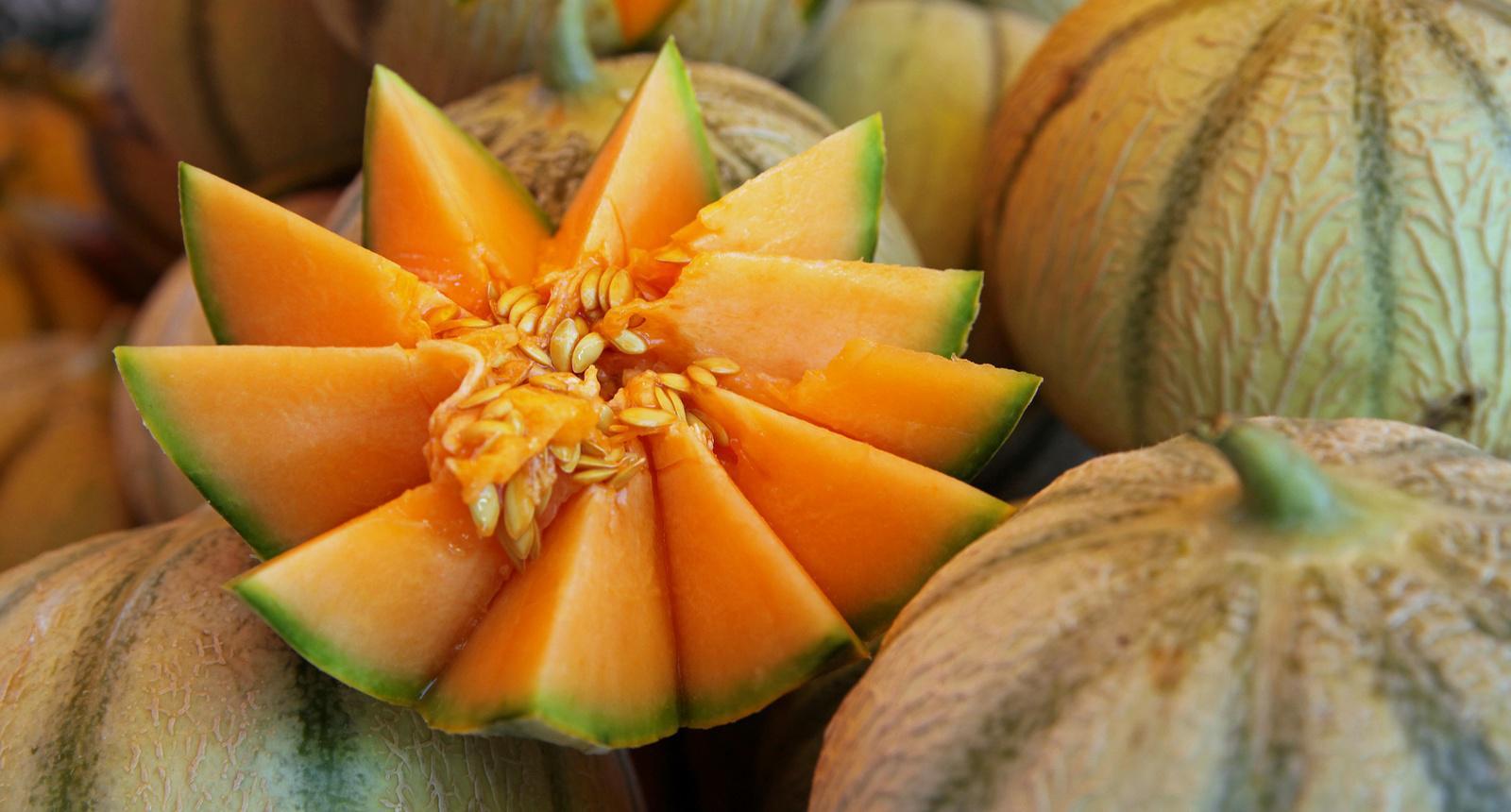 Melons de Cavaillon