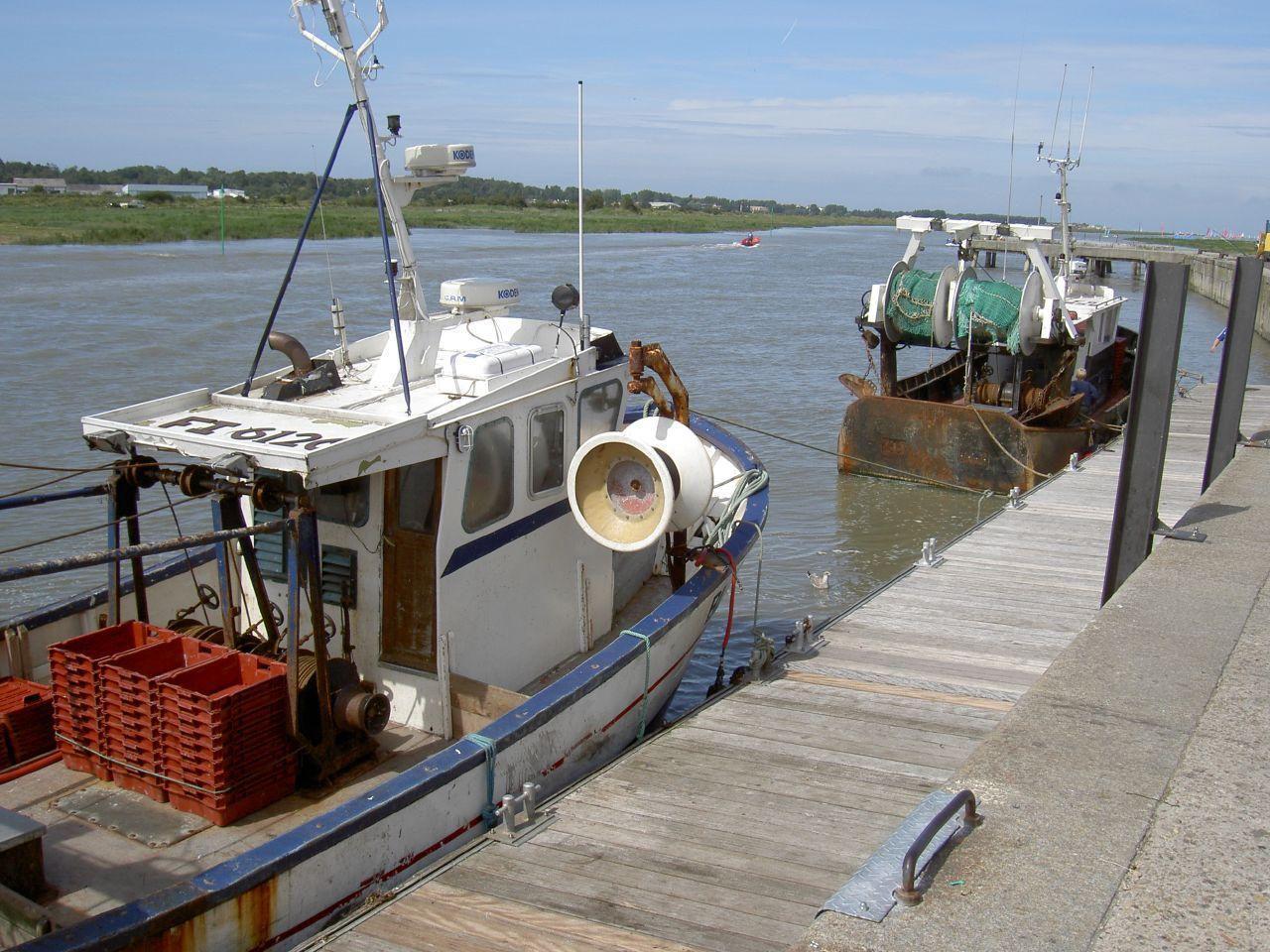 l'estuaire de la Canche le port_Etaples