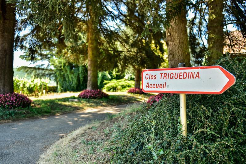 Bienvenue au Clos Triguedina