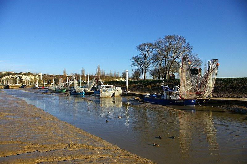 le Chenale_Mortagne sur Gironde (1)
