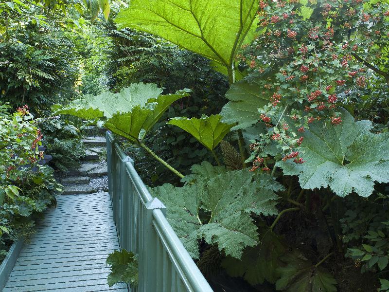 parcs jardins botaniques arboretums seine maritime 76 page 5. Black Bedroom Furniture Sets. Home Design Ideas