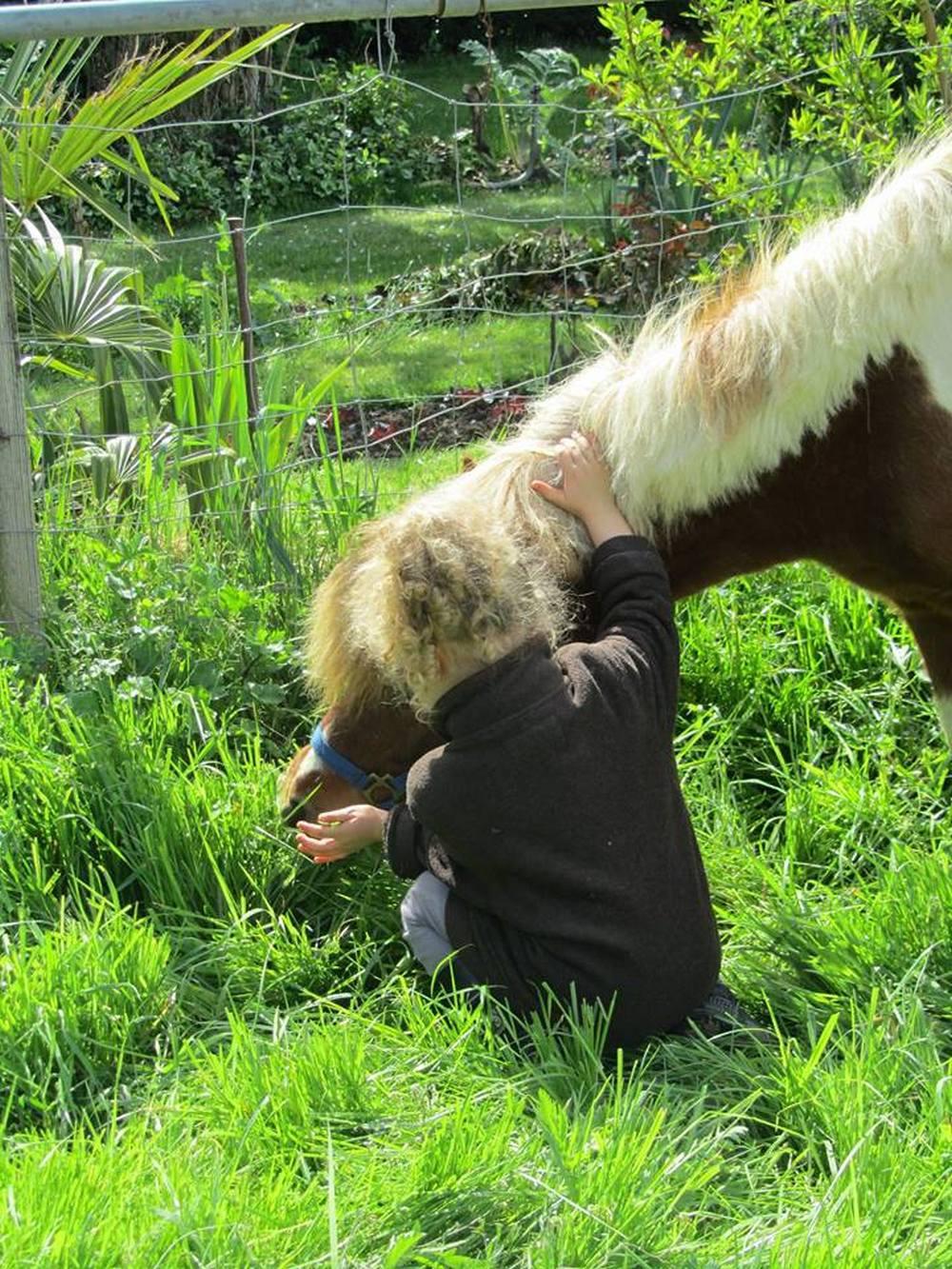 aux petits petons - équitation - OTSGweb