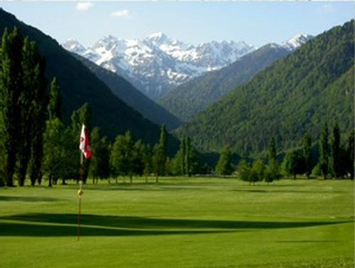 golf cours et stages carte verte haute garonne 31. Black Bedroom Furniture Sets. Home Design Ideas