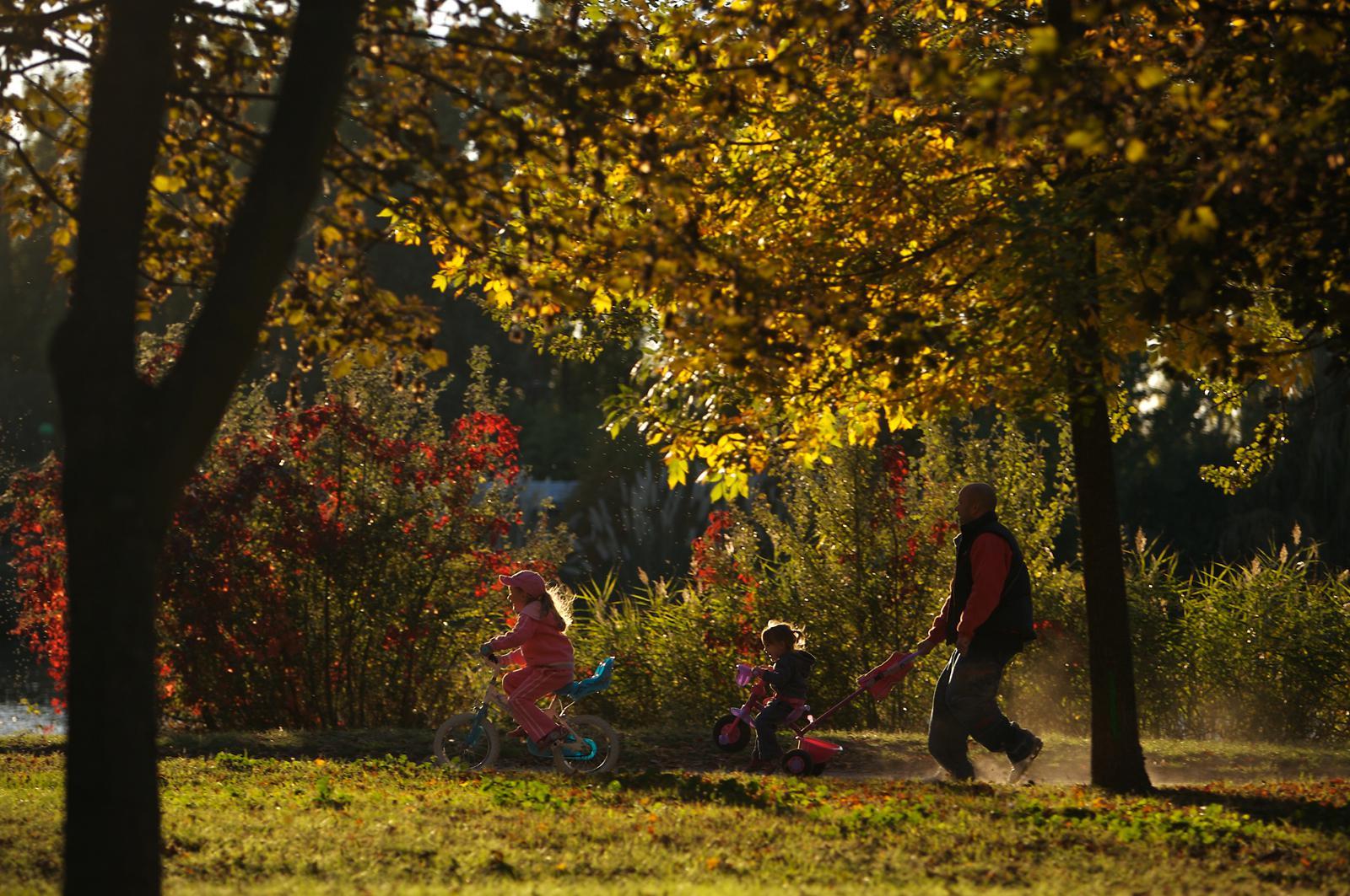 Sesquieres  © Ville de Toulouse - P. Nin2 mod