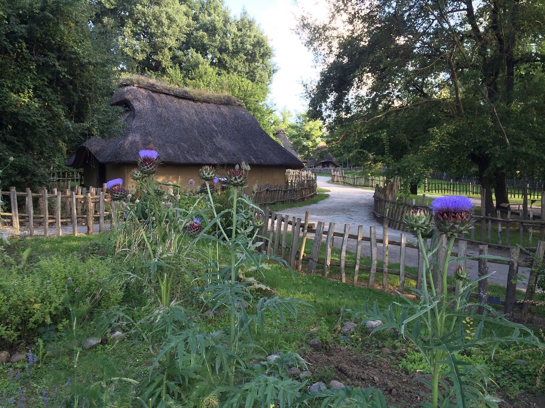 Village gaulois 5 RIEUX