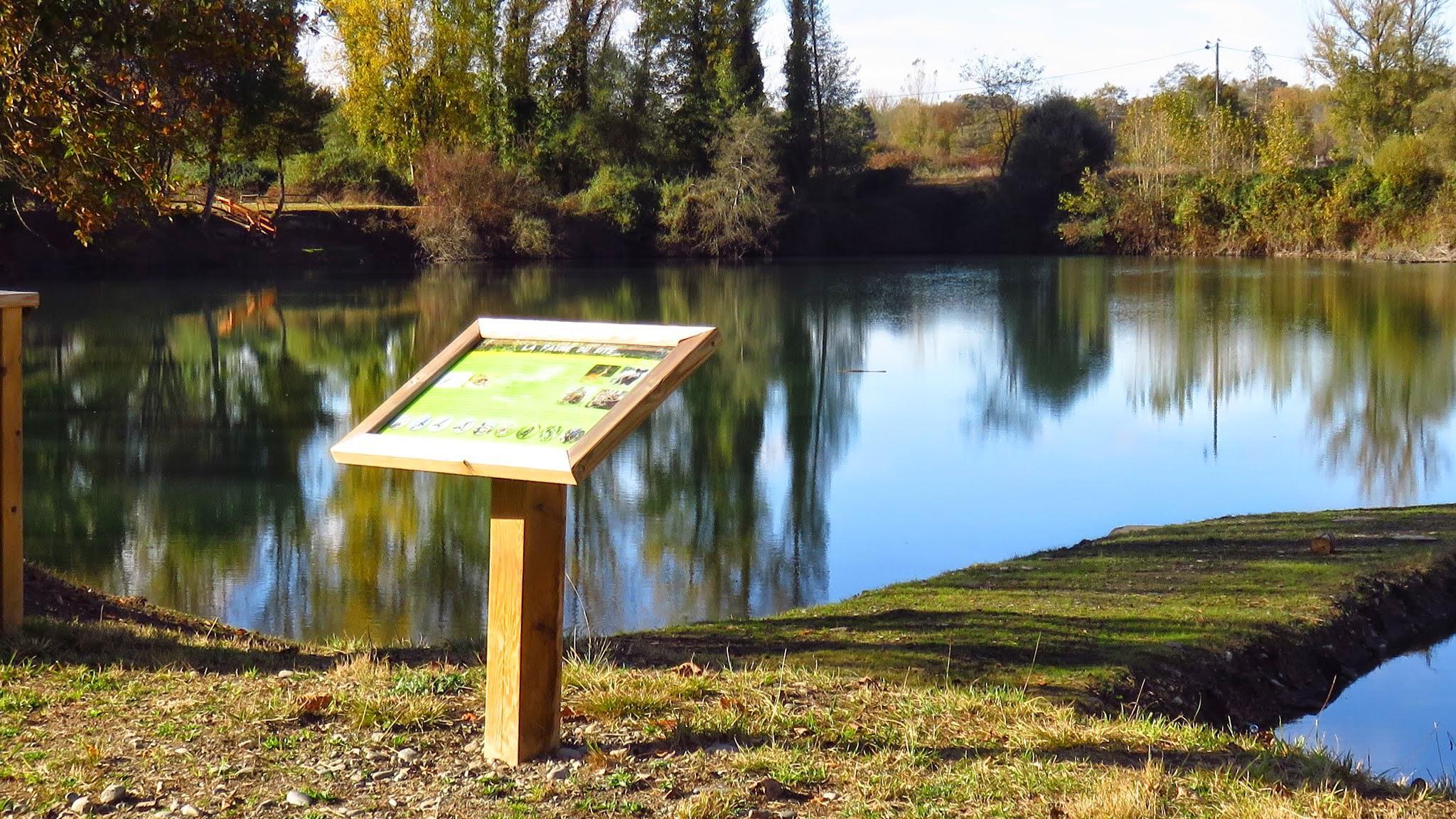 Lac de la Hierle (12)