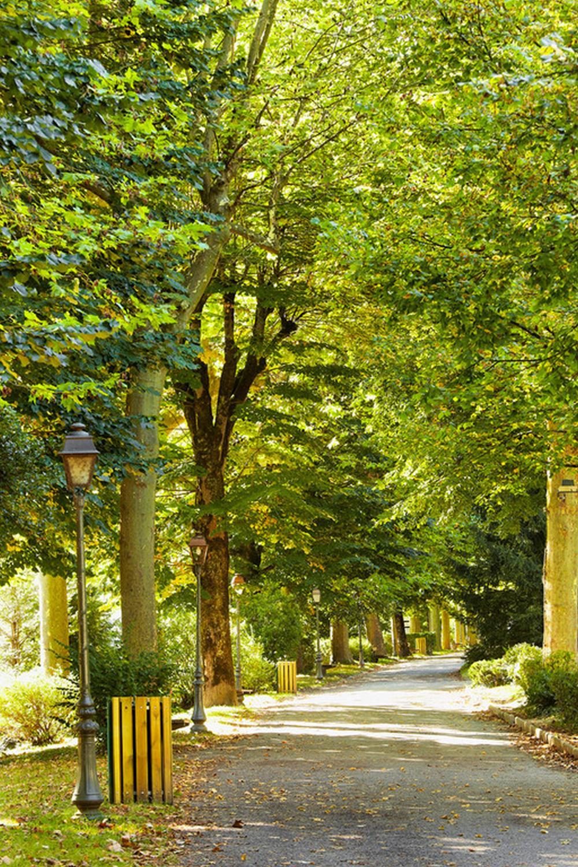 parc quinconces BAGNERES DE LUCHON
