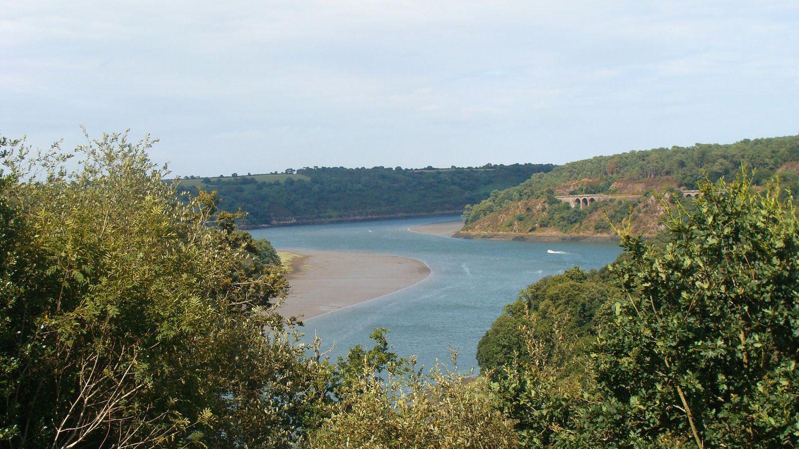 Estuaire du TRIEUX et Forêt littorale de PENHOAT-laNCERF_Plo
