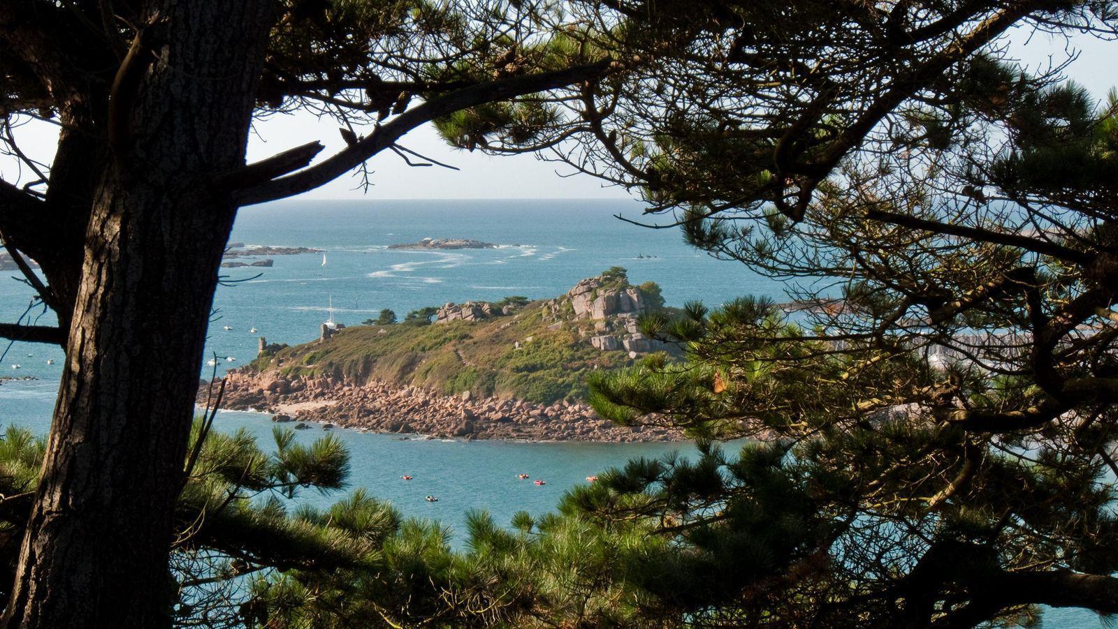 Image : Île Milliau