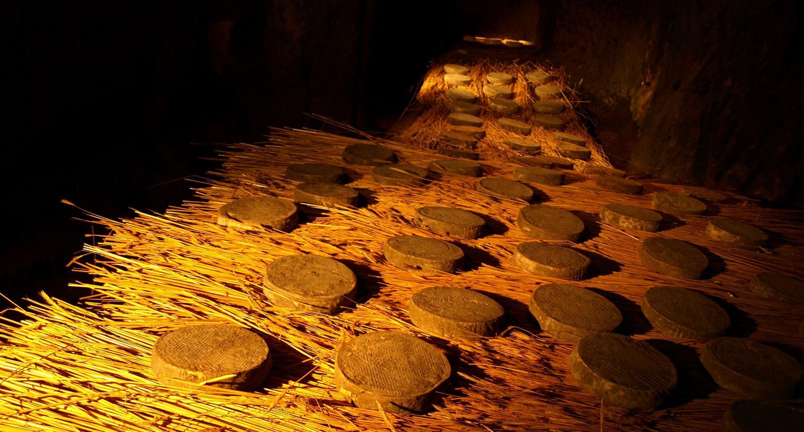 Saint-Nectaires en cave