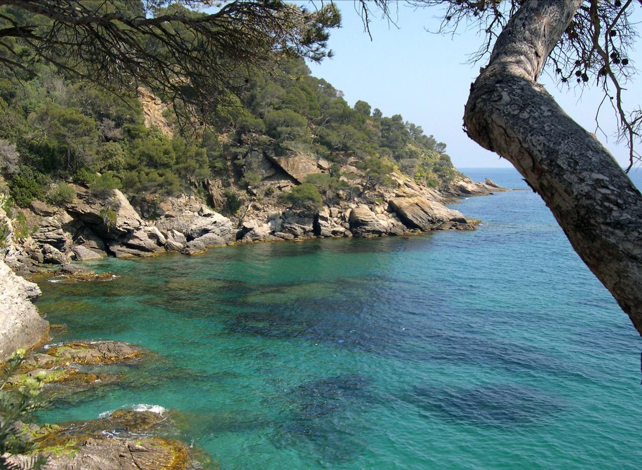 Domaine du Rayol_Rayol-Canadel-sur-Mer