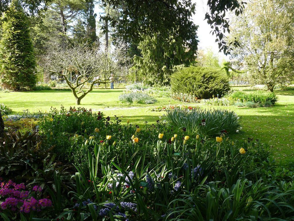 Image : Parc du Thabor