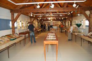 bagneres_museum_histoire_naturelle