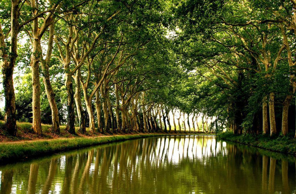 Canal du Midi_Toulouse