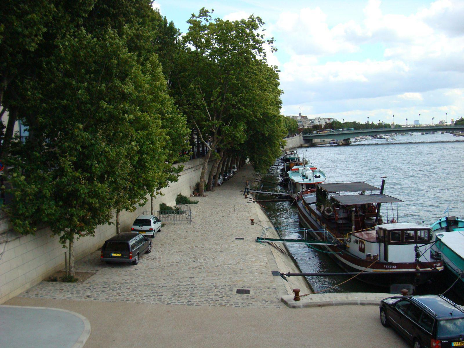 Pont Alma_Paris