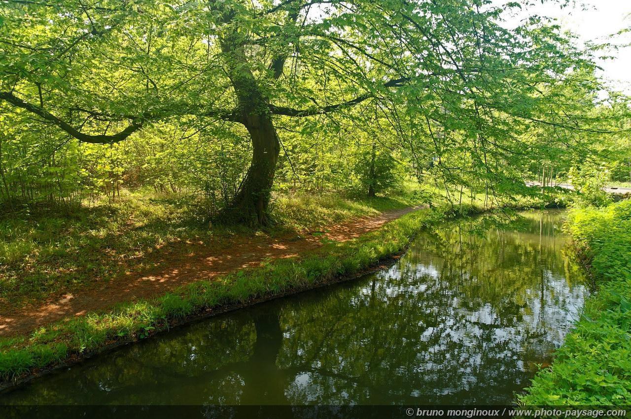 Bois de Boulogne_Paris (1)