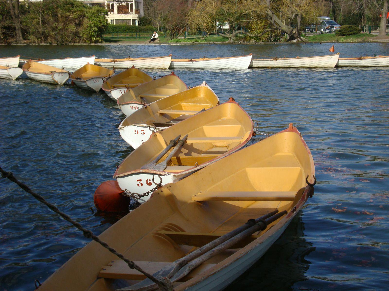 Lacs du Bois de Boulogne_Paris (1)