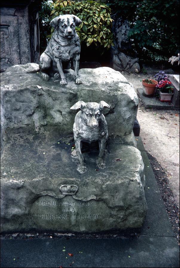 cimetière animalier_Asnières-sur-Seine