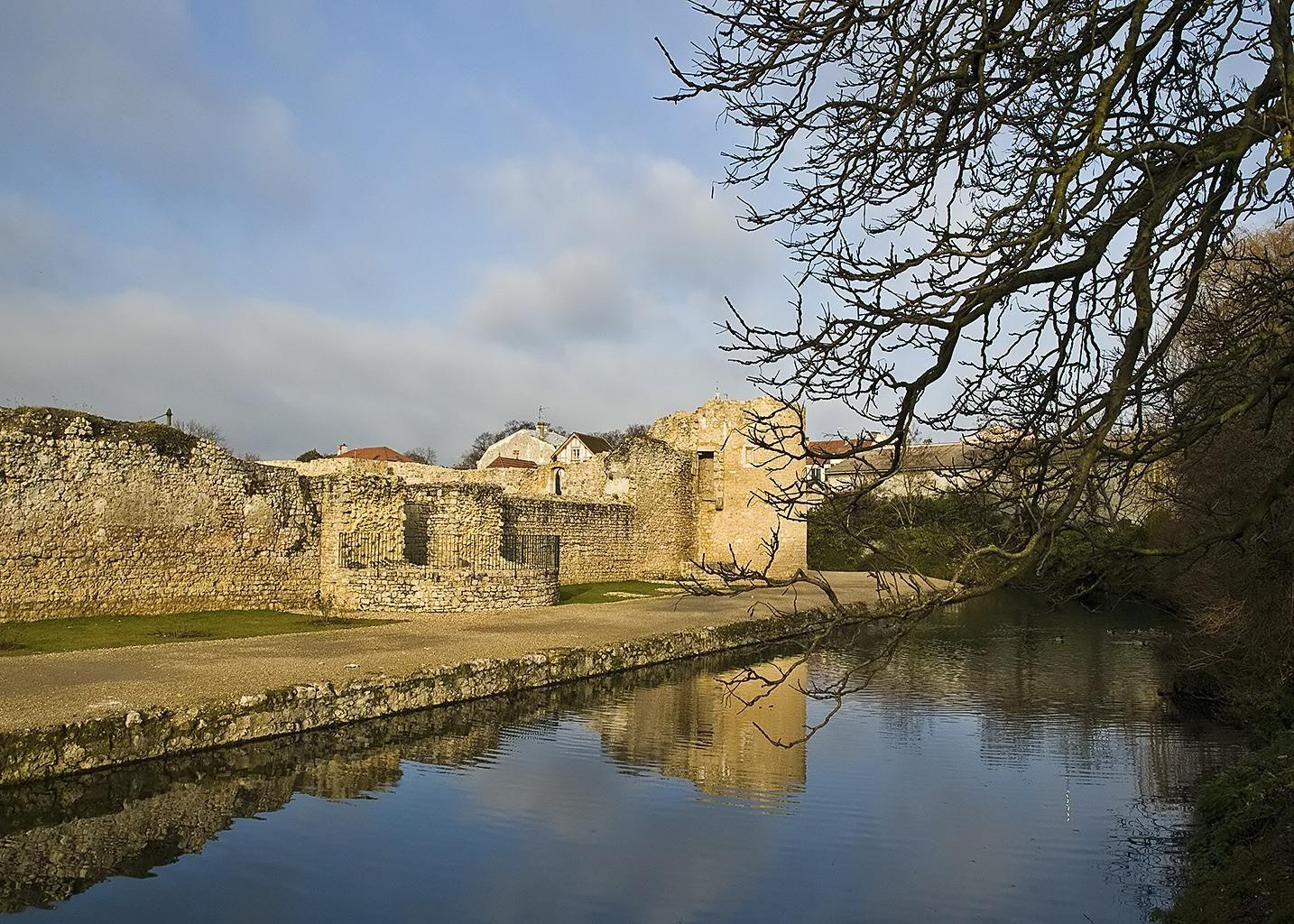Les ruines du château_Brie-Comte-Robert