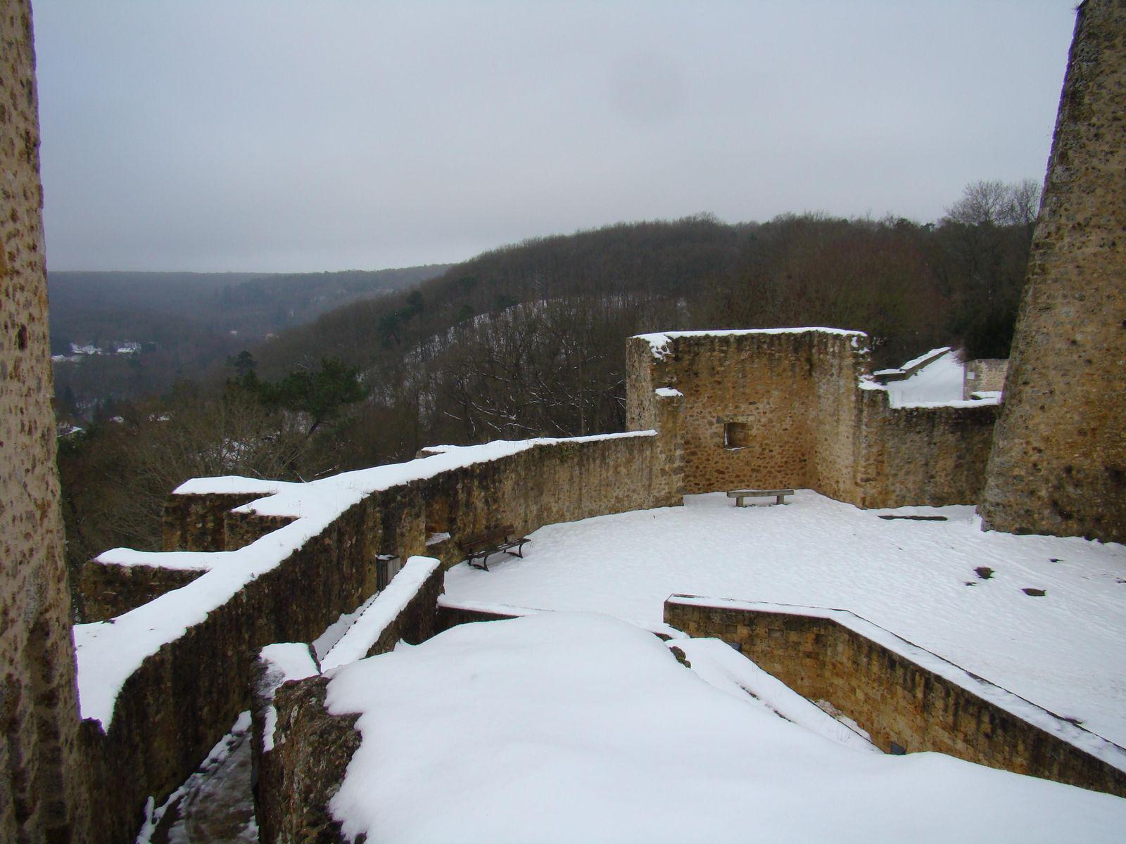 Château de la Madeleine_Chevreuse