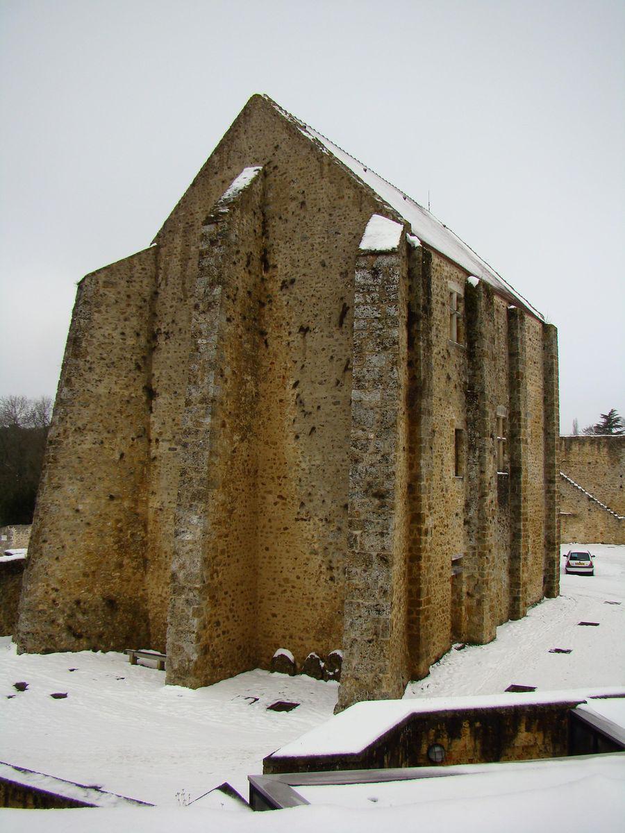 Château de la Madeleine_Chevreuse (1)