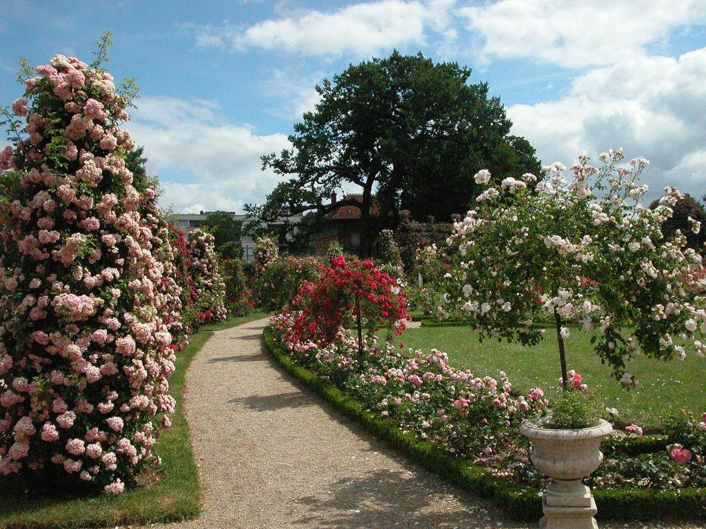 Roseraie du Val-de-Marne_L'Haÿ-les-Roses