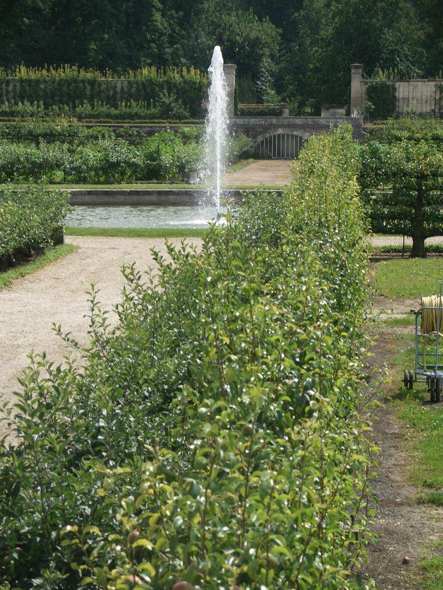 Potager du Roi_Versailles