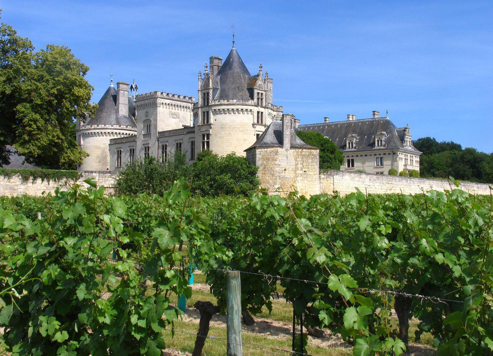 Château_Brézé