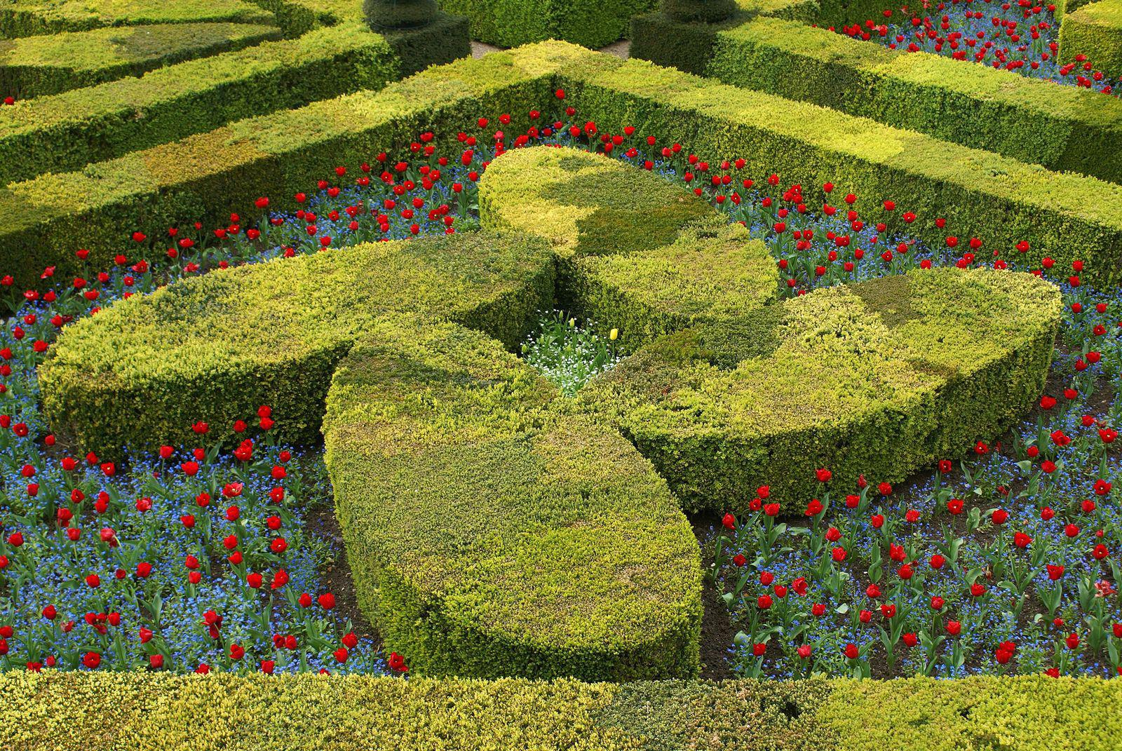 Jardins et château_Villandry (2)